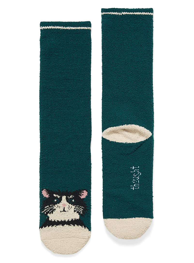 Faithful companion knit socks