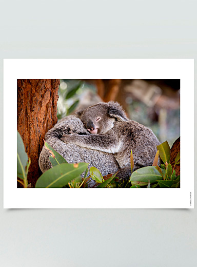 Love in Australia photographic print  3 sizes available