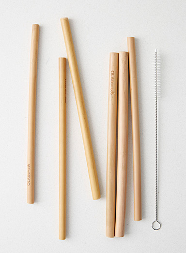 Eco-friendly bamboo reusable straws <br>Set of 6