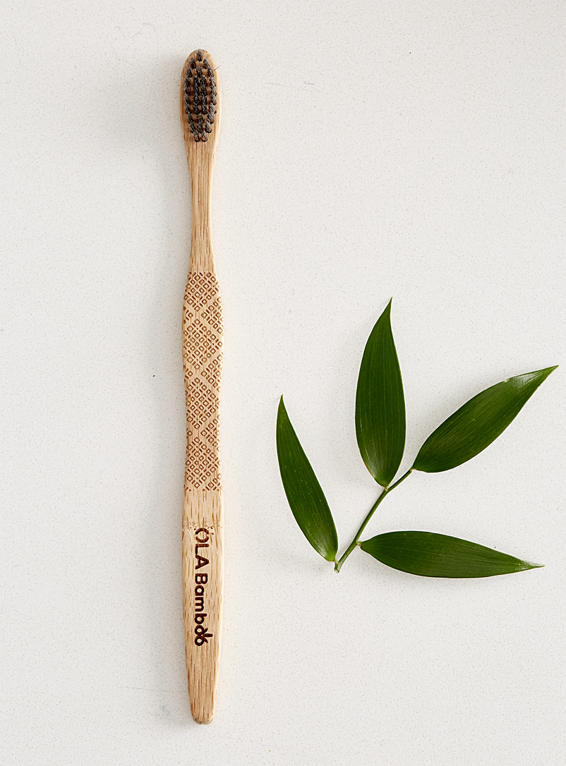 eco-friendly-charcoal-infused-bamboo-toothbrush