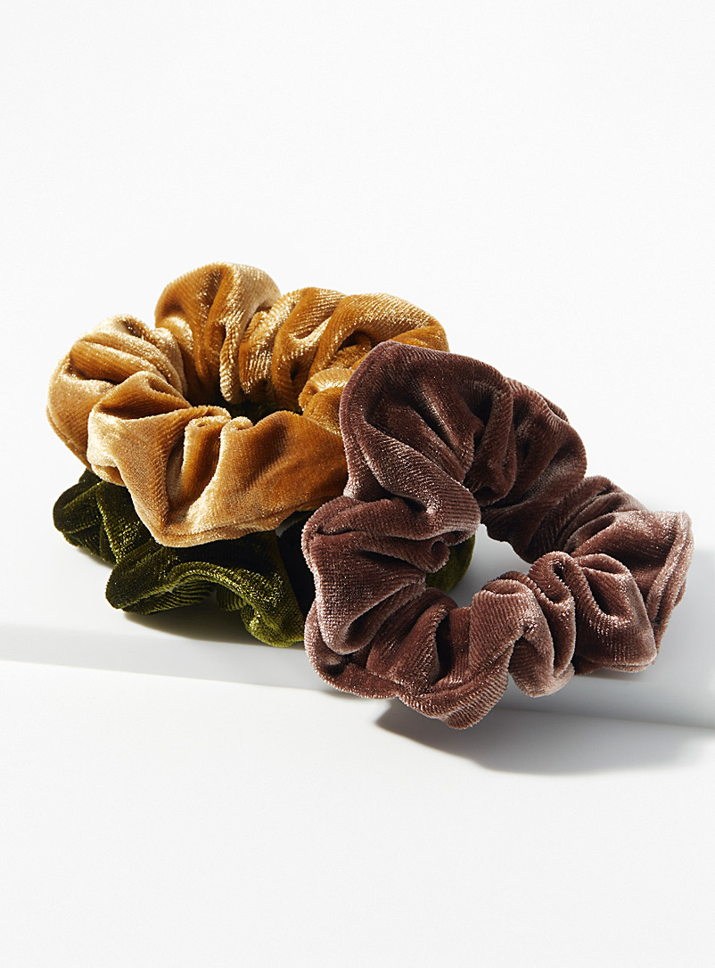 Simons Assorted brown  Rich velvet scrunchies  Set of 3 for women