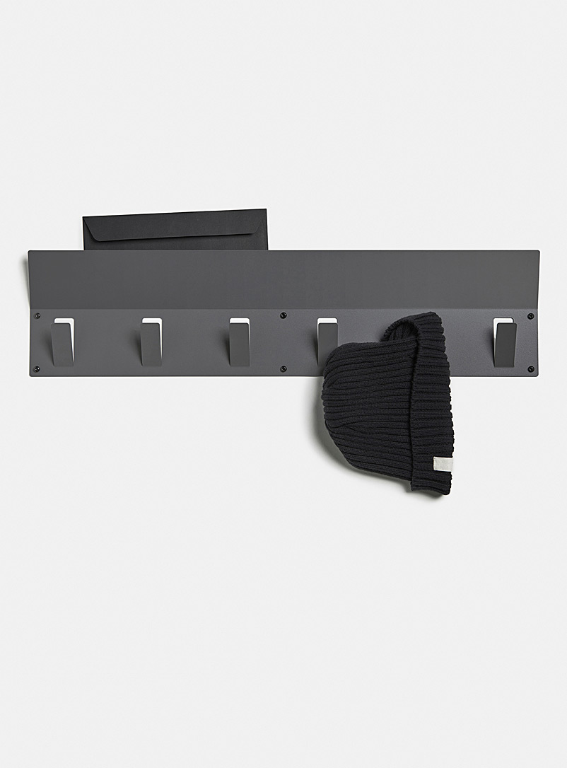 Flexi six hook multifunction rail