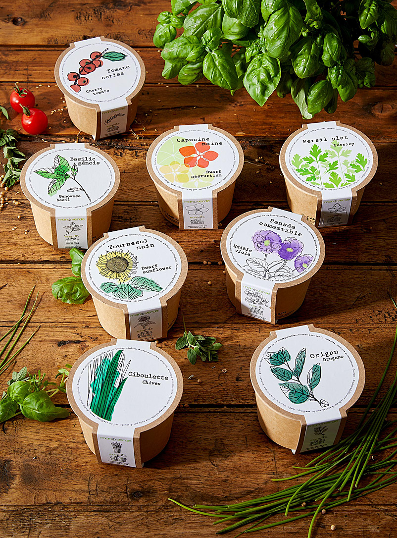 Mano verde Assorted Flowers and herbs to grow 8 eco-friendly mini pots set