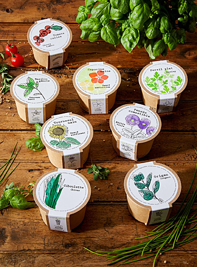 Flowers and herbs to grow 8 eco-friendly mini pots set