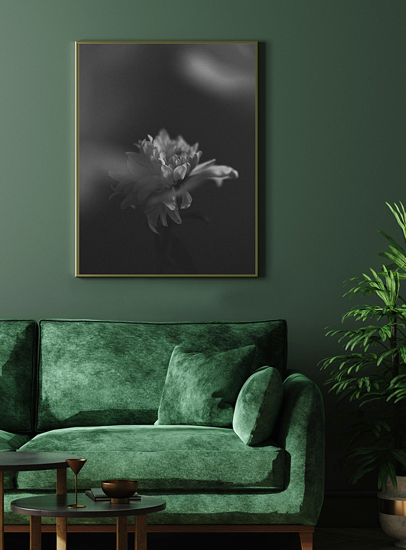 Grace et Flore Black and White Full-size Chrysanthemum photographic print 2 sizes available