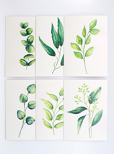 Fiola Green Foliage greeting cards  Set of 6