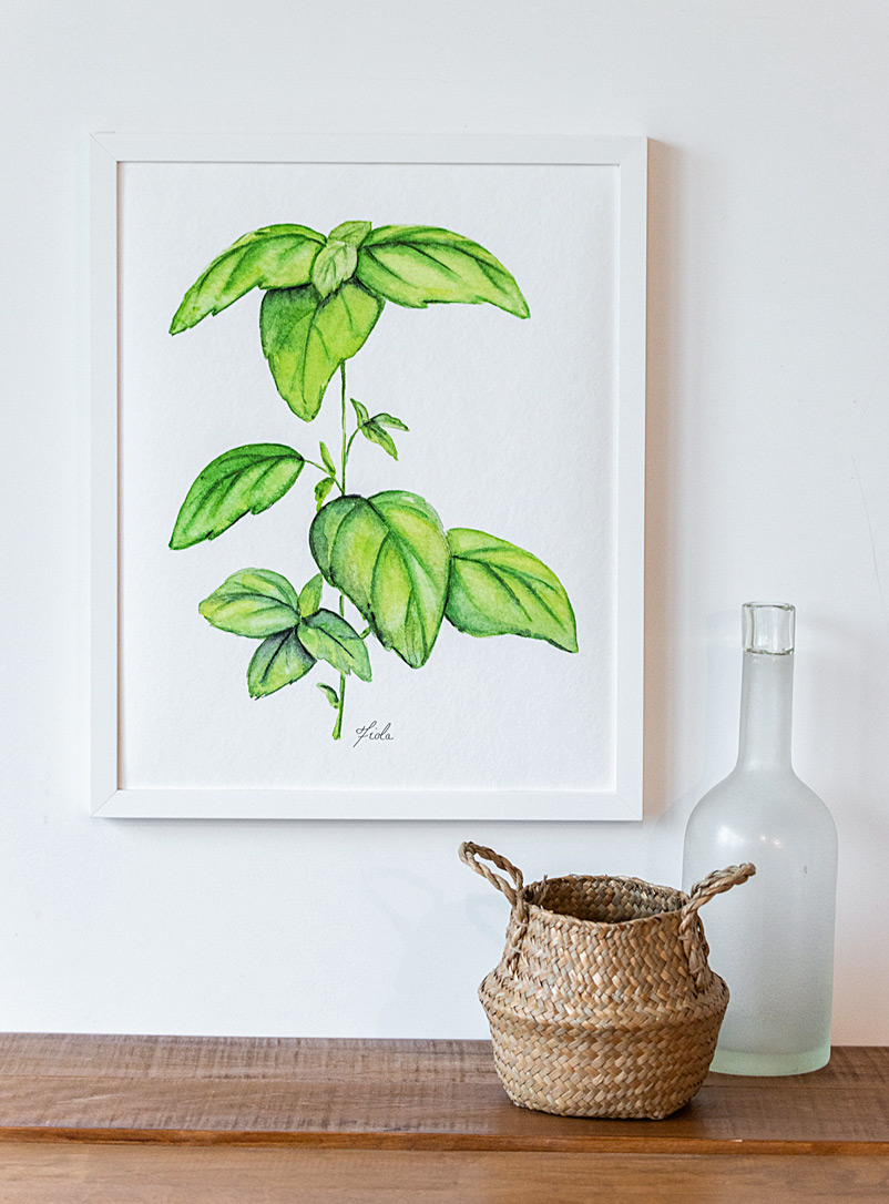 Fiola Green My basil plant art print  3 sizes available