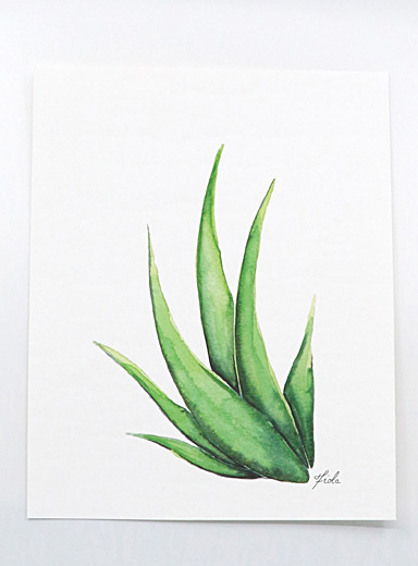 Fiola Green Aloe Vera art print  3 sizes available