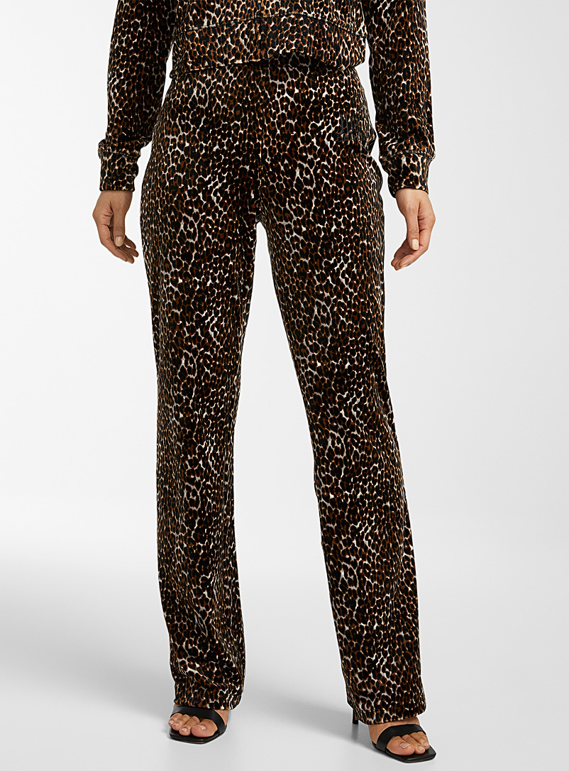 Juicy Couture Patterned Brown Leopard velvet pant for women
