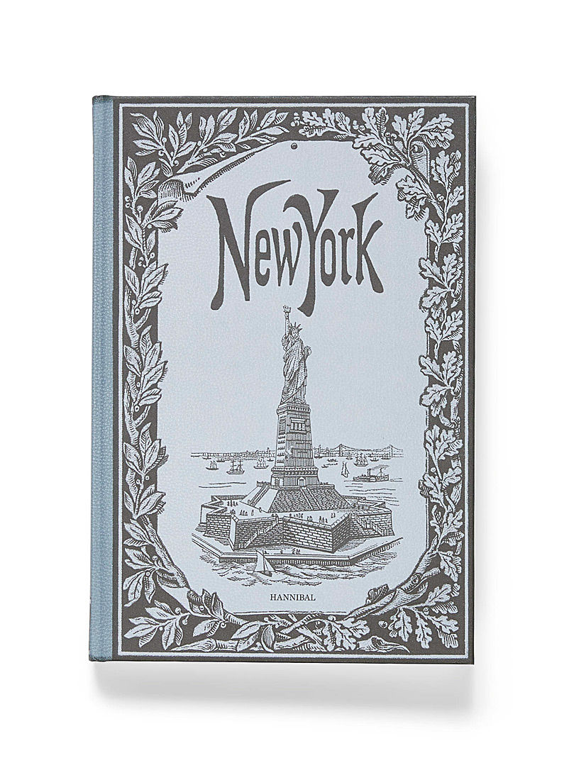 Accart Books Assorted New York: A Photographic Journey book for men