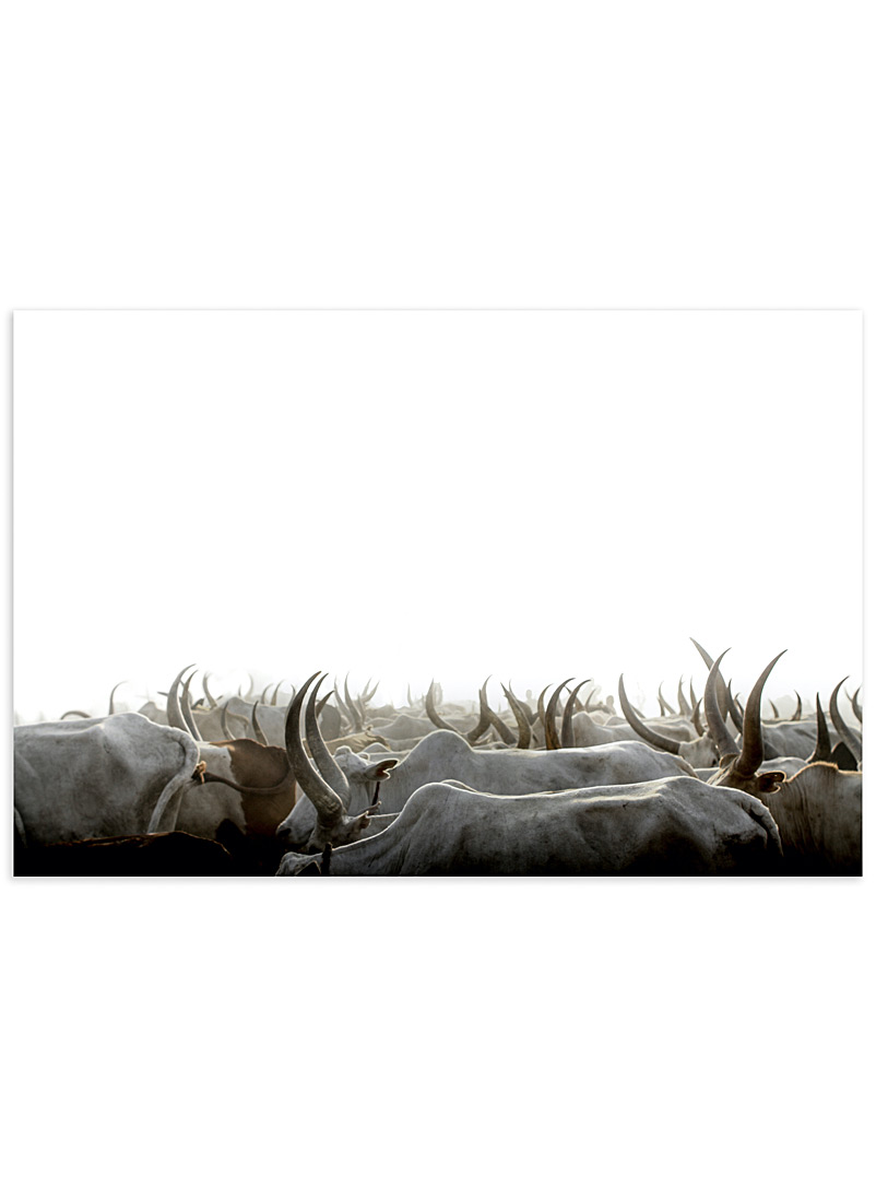 Obakki Assorted A Sea of Antlers photographic print 4 sizes available for women