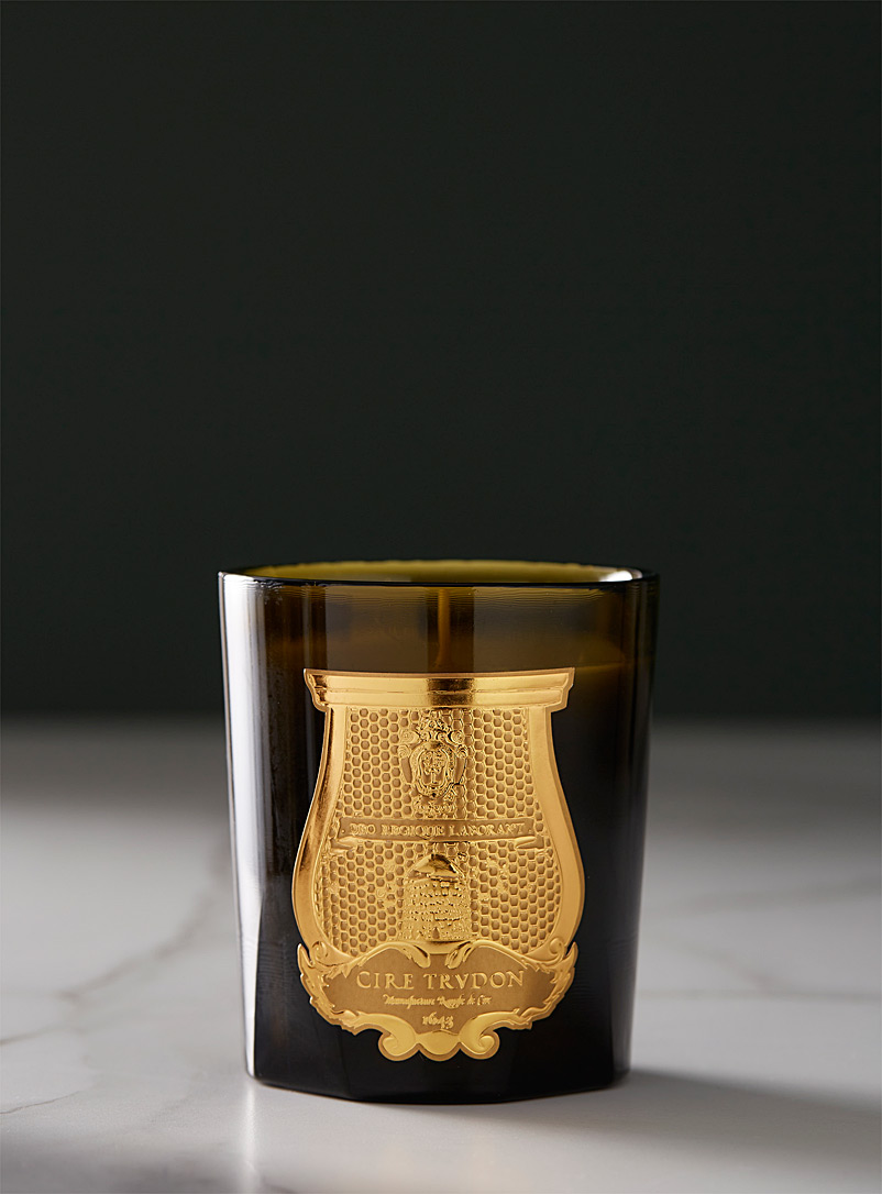 Cire Trudon Assorted Ernesto scented candle Leather and tobacco for women