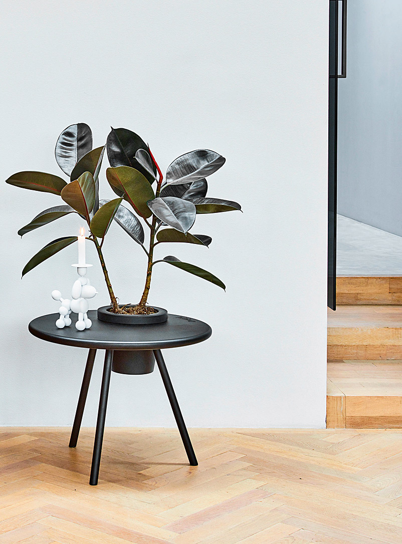 fatboy Charcoal Bakkes built-in planter accent table