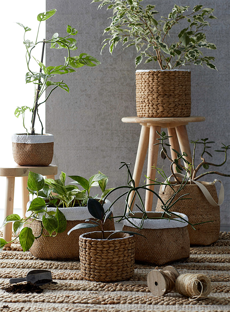 Simons Maison Light Brown Basket-style cement planter 6.25 x 7 in