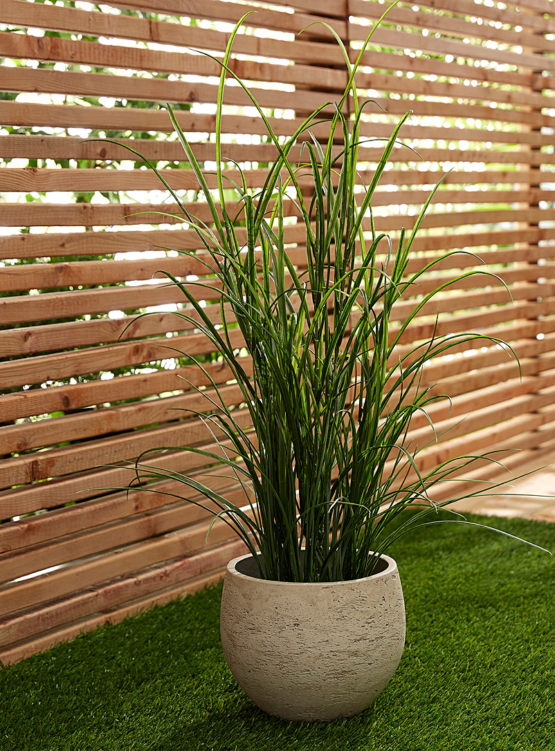 River grass large imitation green plant