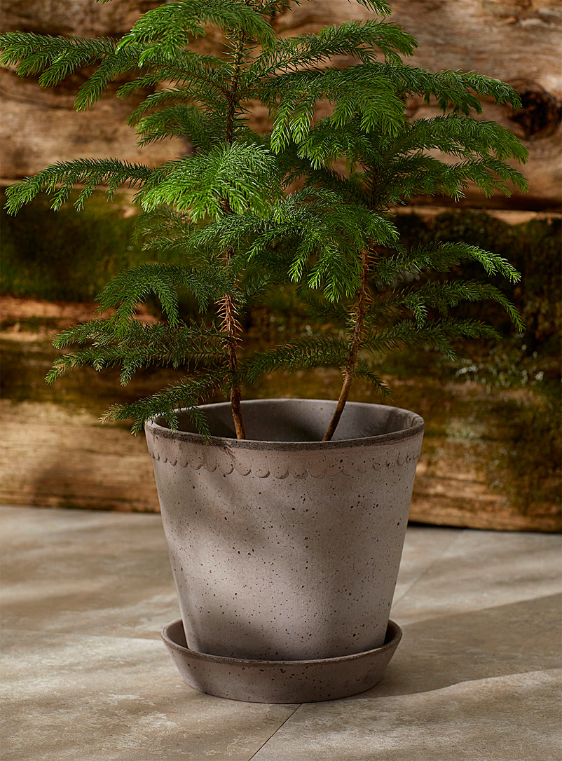 Bergs Potter Light Grey Helena grey clay planter 8 in