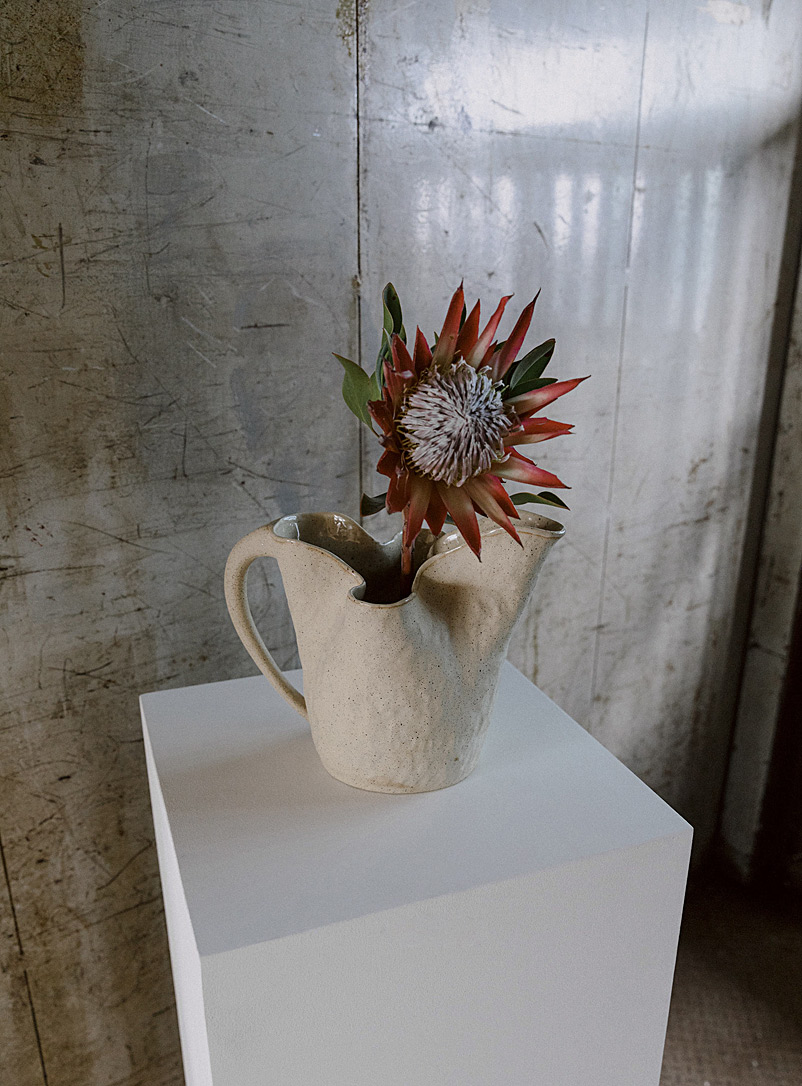 Sévigny Fawn Philodendron pitcher for women