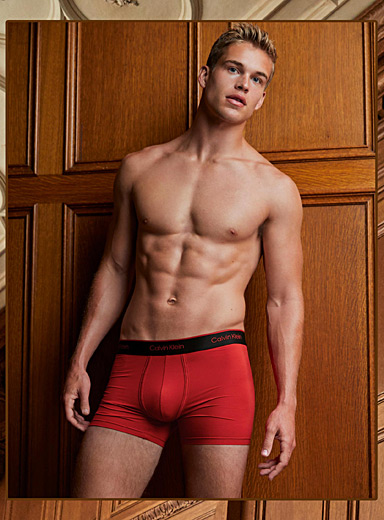 Micro-mesh boxer brief  2-pack