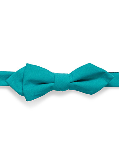 Colourful bow tie