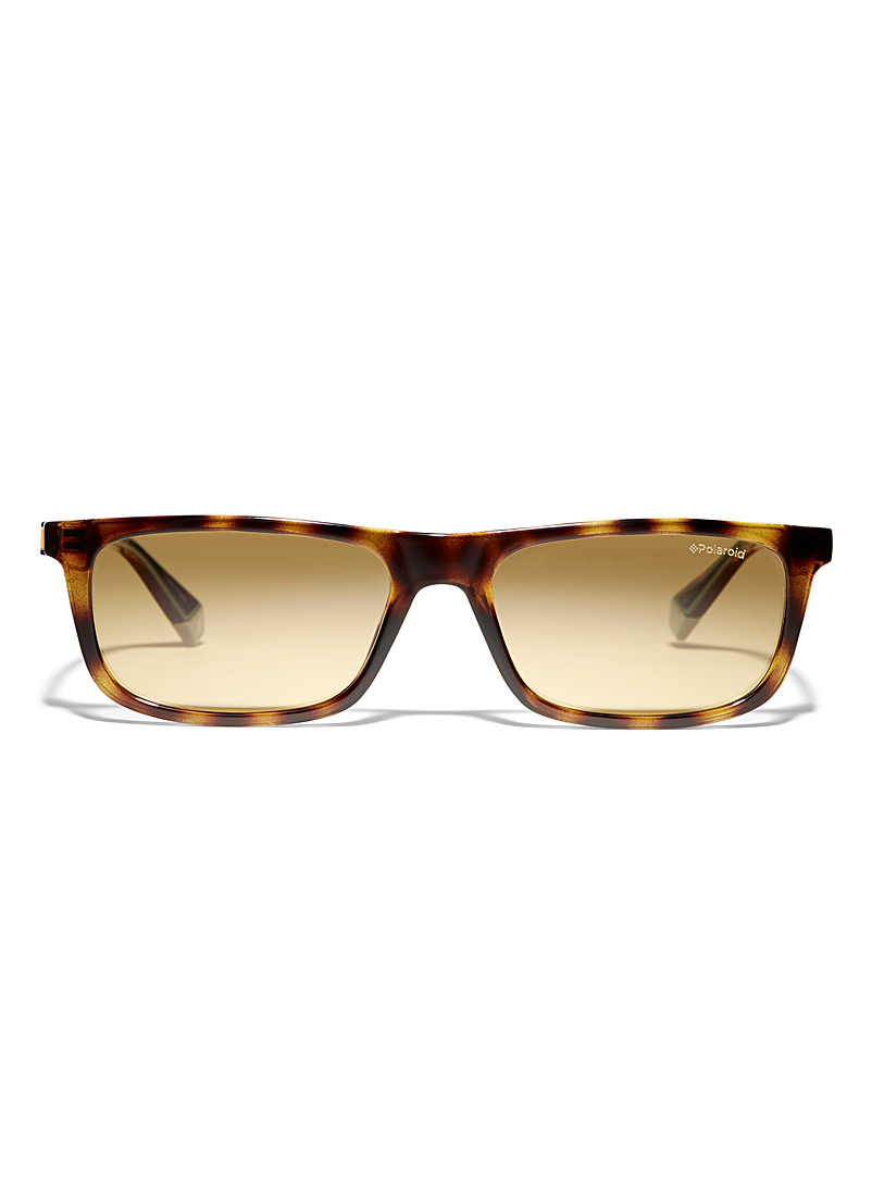 Polaroid Patterned Brown Rectangular sunglasses for men