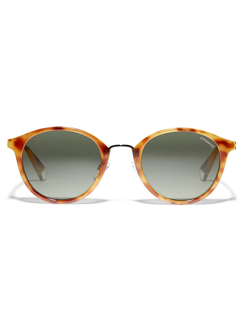 Polaroid Medium Brown Translucent point round sunglasses for women