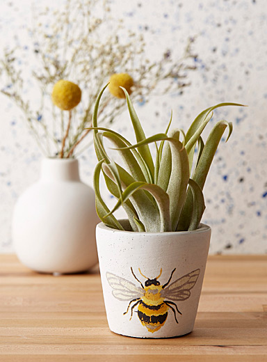 Little bee planter 3""