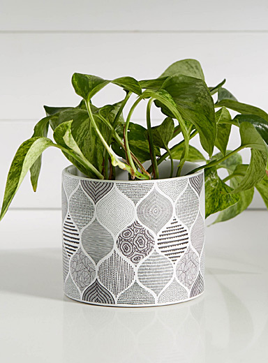 Graphic curves planter