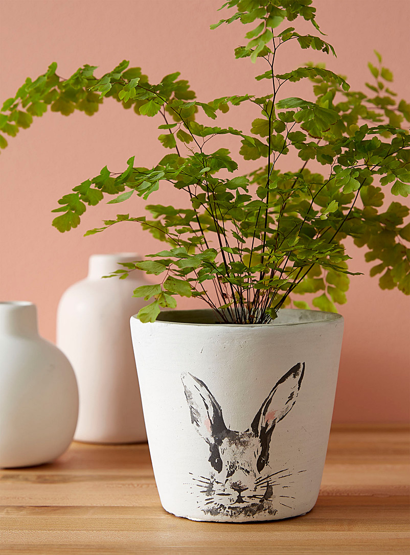 Simons Maison Assorted Rabbit portrait planter