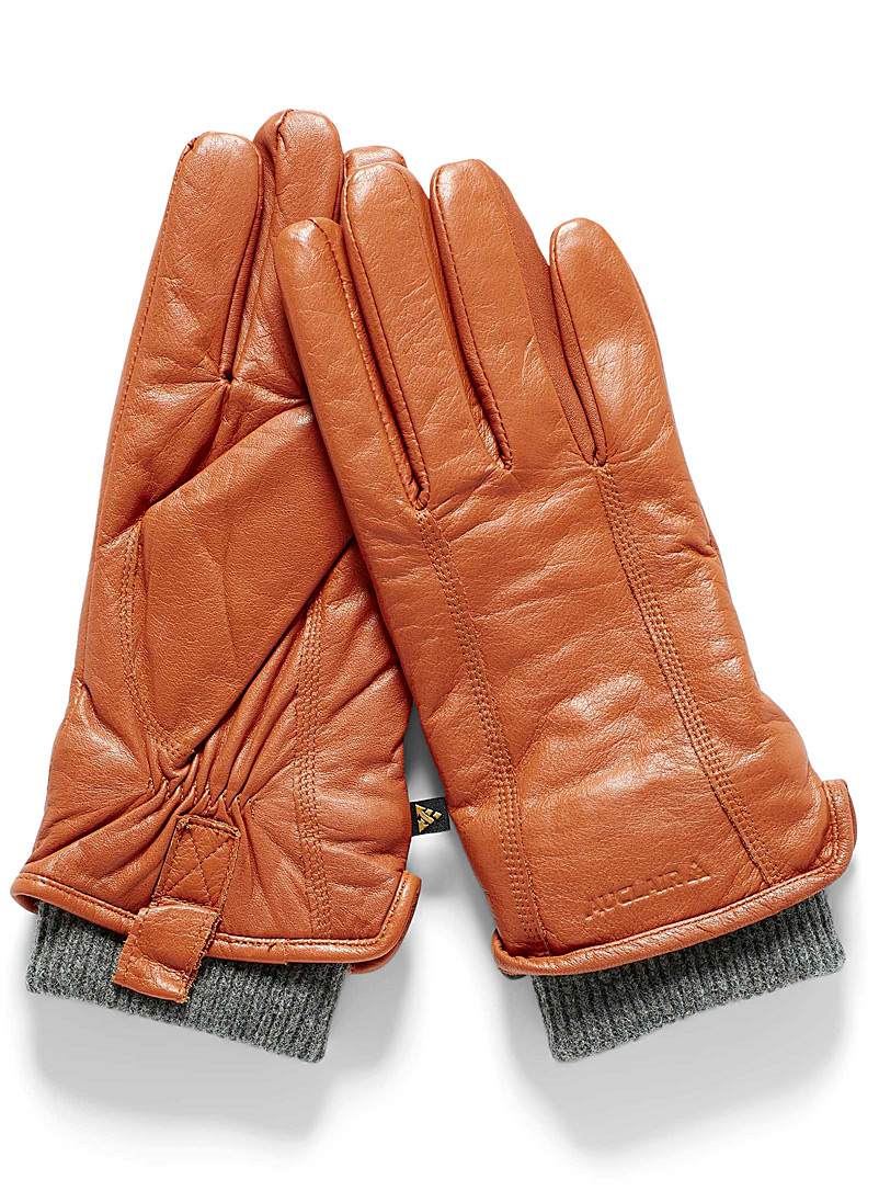 Auclair Honey Aya knit cuff insulated leather gloves for women