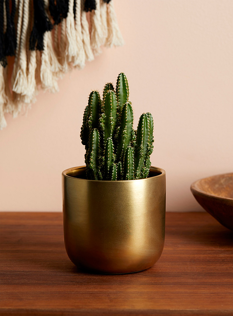 Gold nugget planter