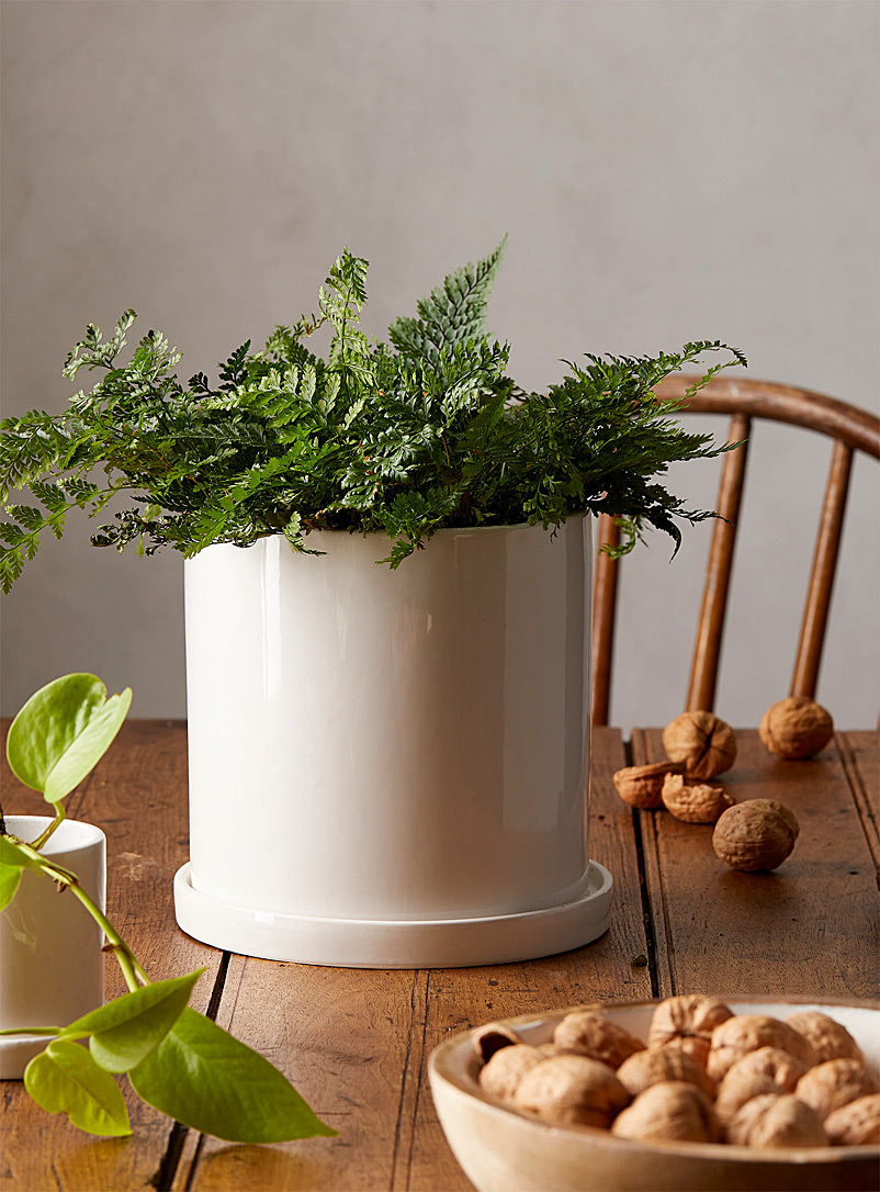Simons Maison White Minimalist planter with saucer 6.25 in