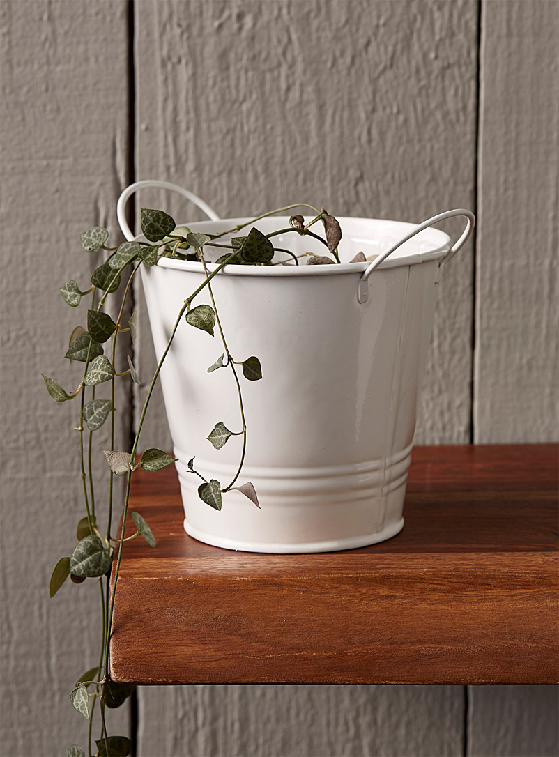 small-bucket-planter