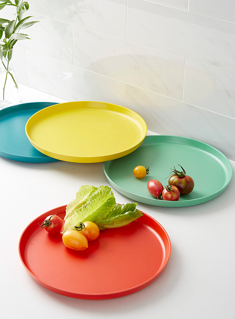 Danica Assorted Vivid Ecology plates  Set of 4