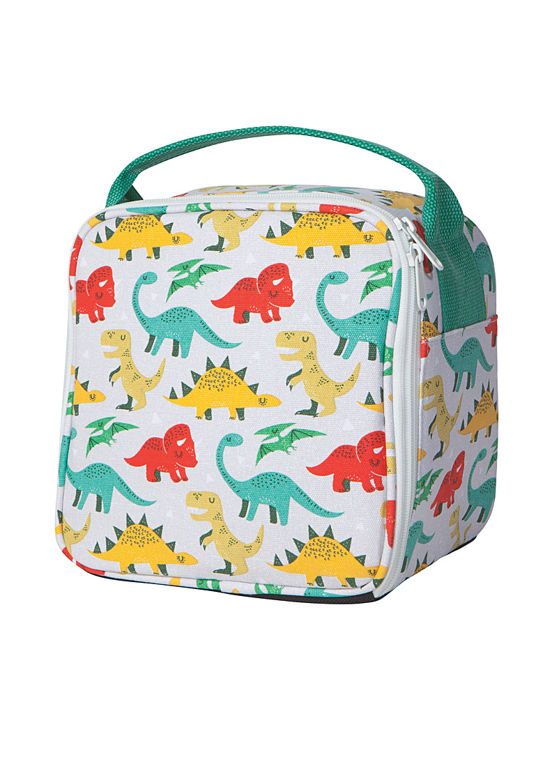 Danica Assorted Little dinos lunch box