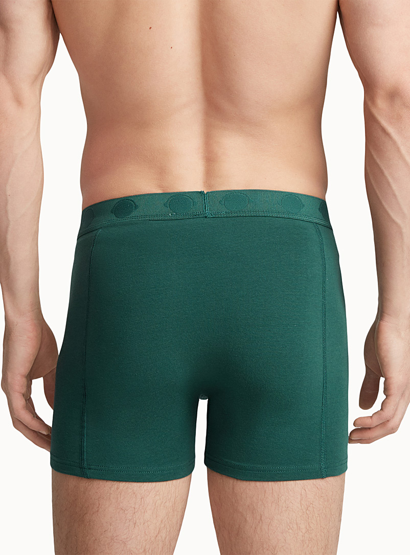 Bright jersey boxer brief - Boxers & Briefs - Mossy Green