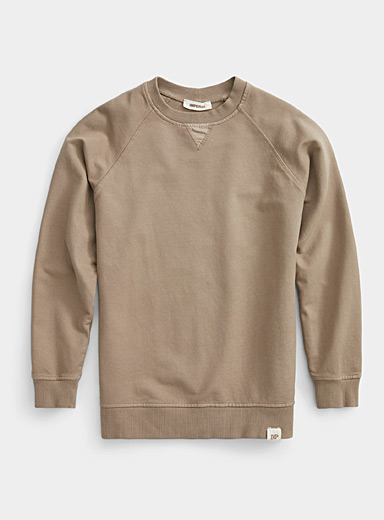 Imperial Sand Natural earth sweatshirt for men