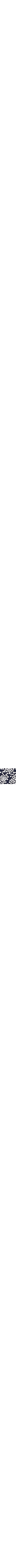 Patterned Blue