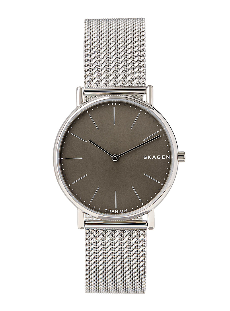 Skagen Grey Signatur watch for men