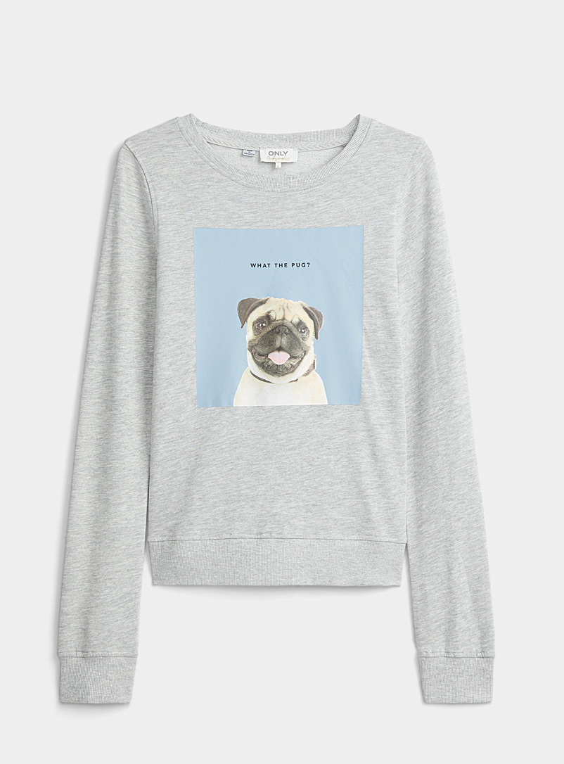 Le sweat image animal