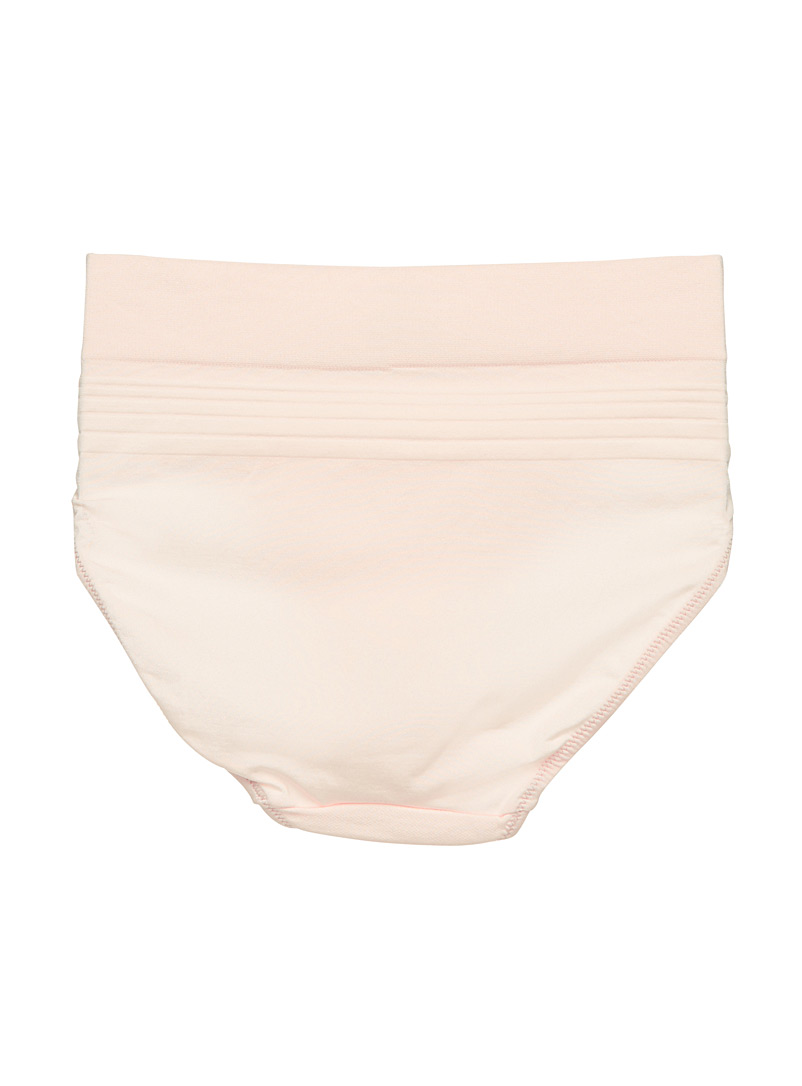 Warner's Tan Silky high-rise bikini panty for women