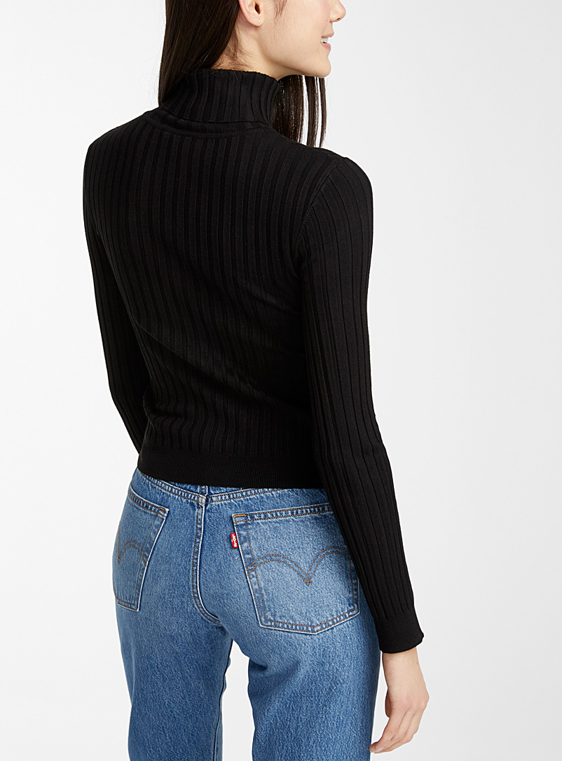 Solid ribbed turtleneck - Sweaters & Cardigans - Black