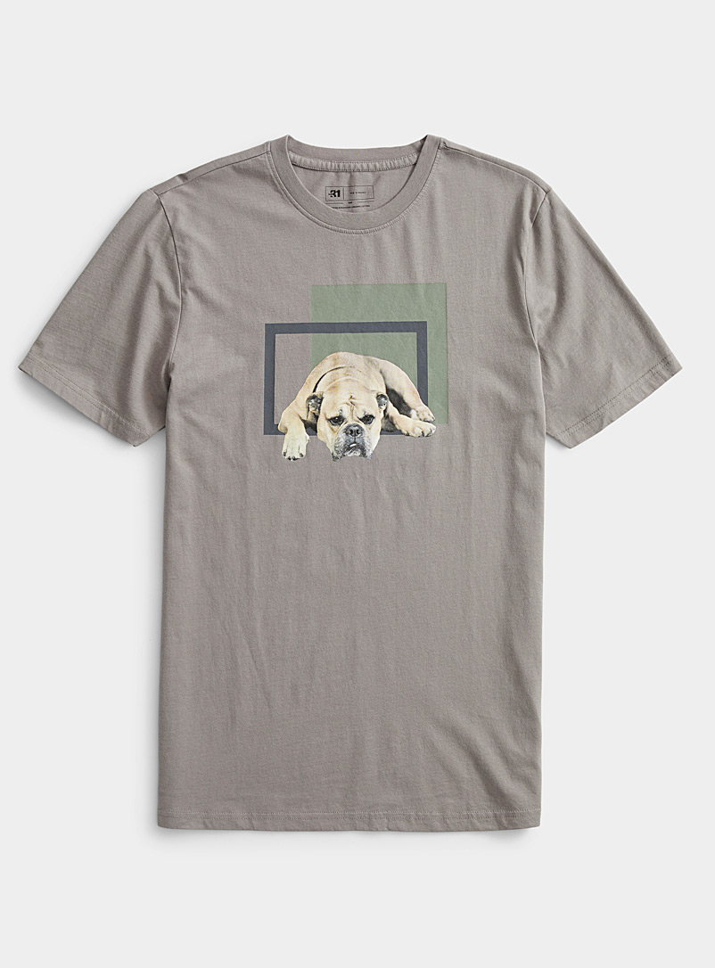 Le 31 Grey Graphic canine T-shirt for men