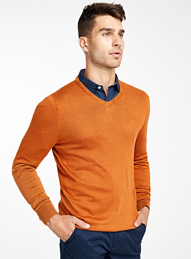 Le 31 Fawn Bamboo rayon V-neck sweater for men