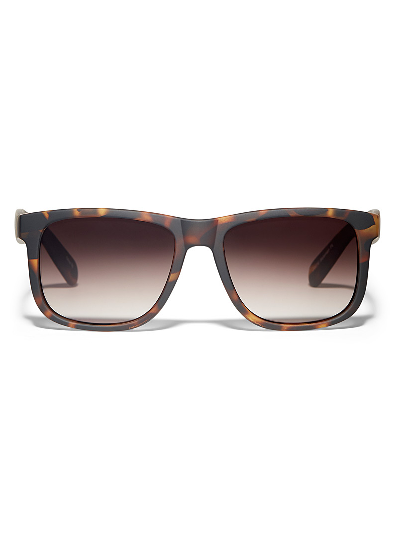 matte-polarized-sunglasses