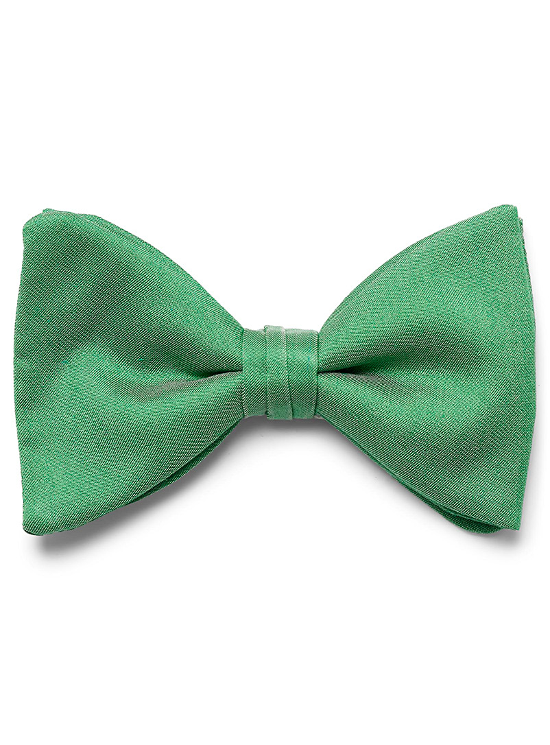 Polished colour bow tie - Bow Ties - Kelly Green
