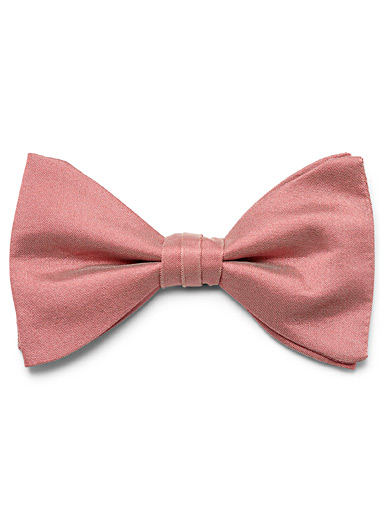 Polished colour bow tie