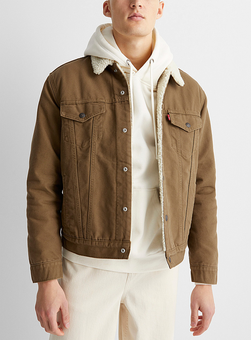 Levi's Fawn Canvas Trucker jacket for men