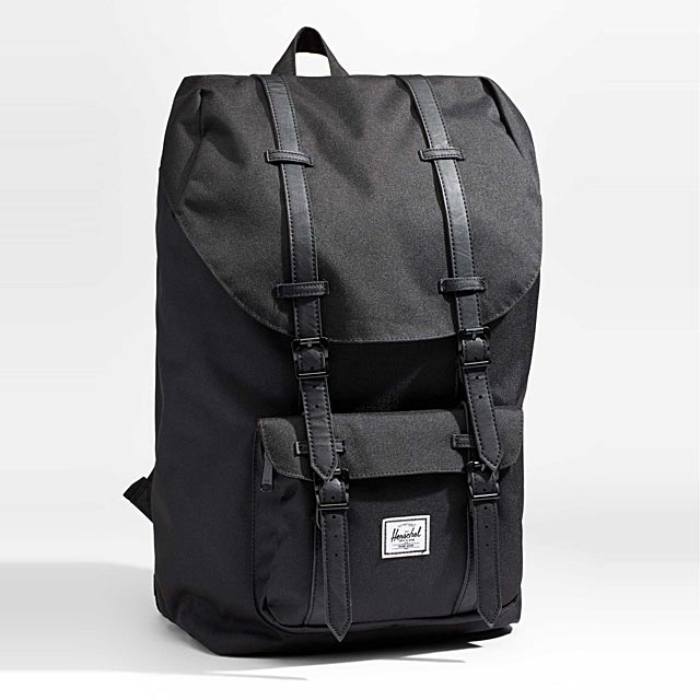 little-america-25-litre-backpack