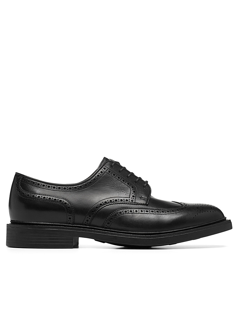 La chaussure brogue Asher  Homme