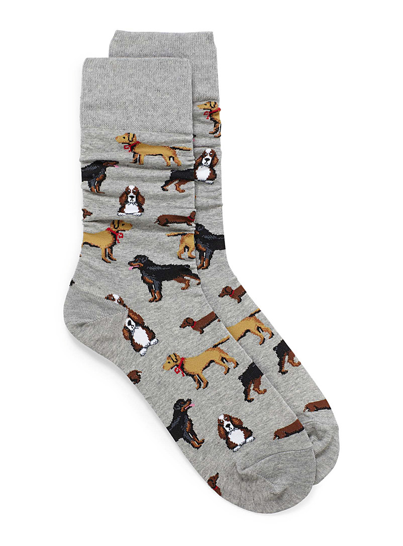 multi-dog-socks